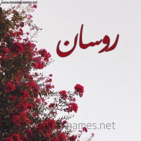 صورة اسم روسان Rosan شكل 18 صوره الورد الأحمر للإسم بخط رقعة