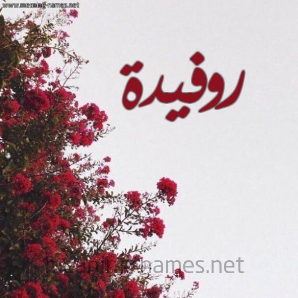 شكل 18 صوره الورد الأحمر للإسم بخط رقعة صورة اسم روفيدة ROFIDH