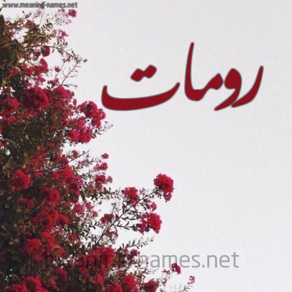 صورة اسم رومات Romat شكل 18 صوره الورد الأحمر للإسم بخط رقعة