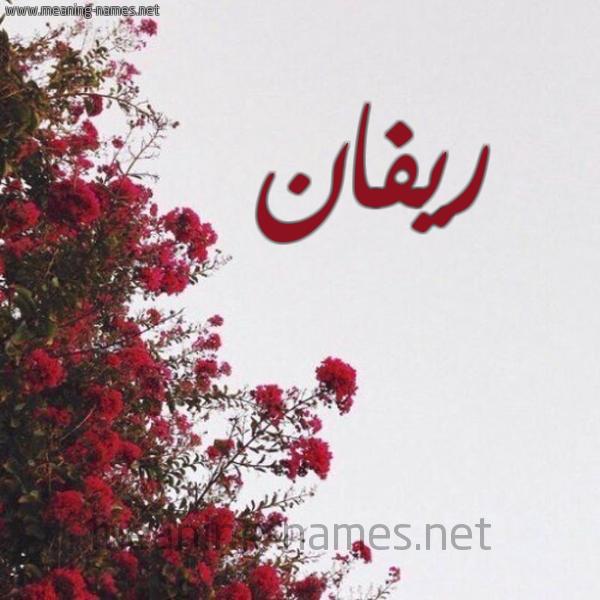 صورة اسم ريفان Rivan شكل 18 صوره الورد الأحمر للإسم بخط رقعة