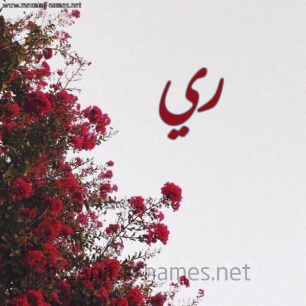 شكل 18 صوره الورد الأحمر للإسم بخط رقعة صورة اسم ري RI
