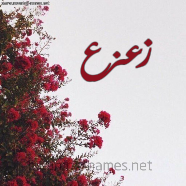 كل زخرفة وحروف Z Z زخرفة أسماء كول