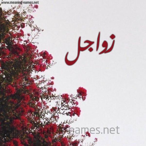 صورة اسم زواجل Zwajl شكل 18 صوره الورد الأحمر للإسم بخط رقعة