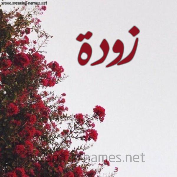 صورة اسم زودة Zwd'h شكل 18 صوره الورد الأحمر للإسم بخط رقعة