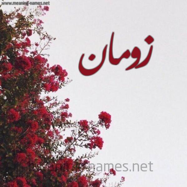صورة اسم زومان Zwman شكل 18 صوره الورد الأحمر للإسم بخط رقعة