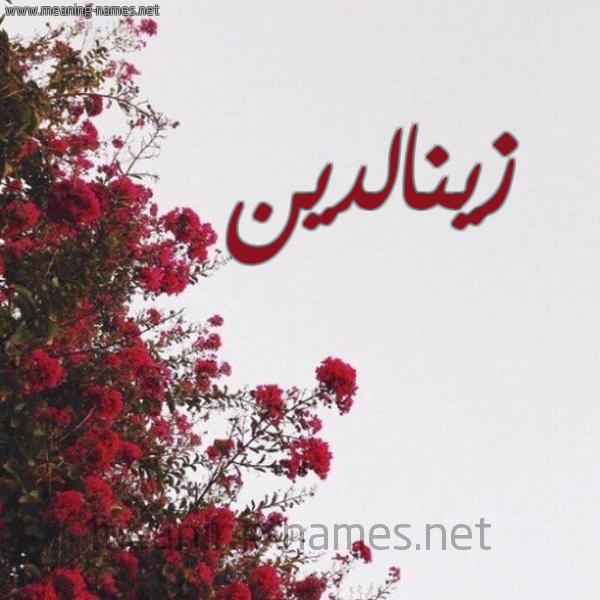 صورة اسم زينالدين Zynaldyn شكل 18 صوره الورد الأحمر للإسم بخط رقعة