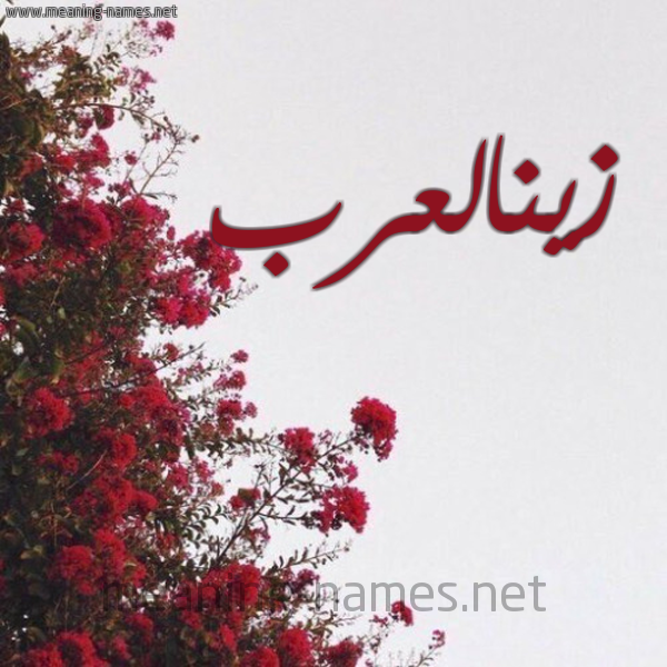 صورة اسم زينالعرب Zynal'rb شكل 18 صوره الورد الأحمر للإسم بخط رقعة
