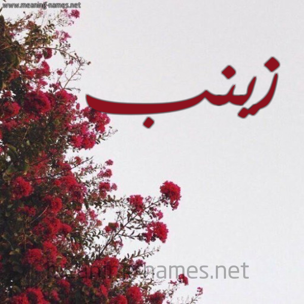 صورة اسم زينب Zaynab شكل 18 صوره الورد الأحمر للإسم بخط رقعة