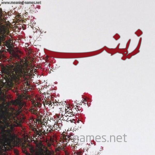 صورة اسم زَيْنَب Zainab شكل 18 صوره الورد الأحمر للإسم بخط رقعة