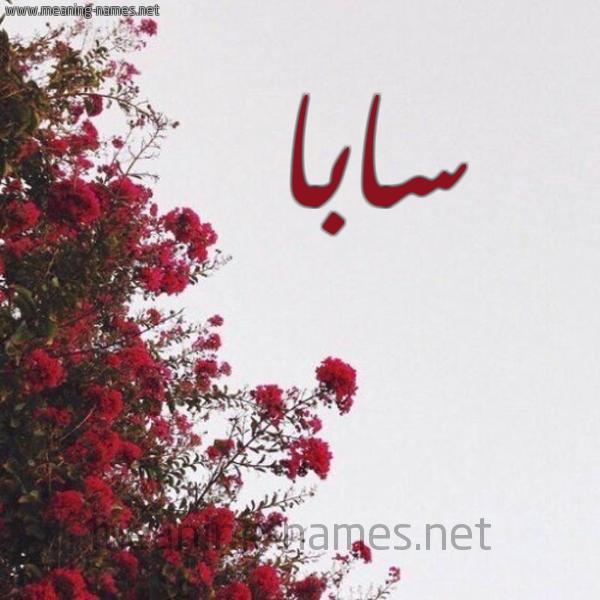 صورة اسم سابا Saba شكل 18 صوره الورد الأحمر للإسم بخط رقعة