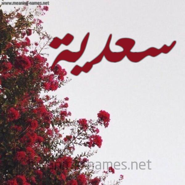 شكل 18 صوره الورد الأحمر للإسم بخط رقعة صورة اسم سعدية Sadiya