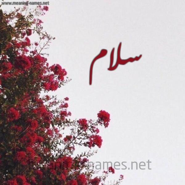 صورة اسم سلام Slam شكل 18 صوره الورد الأحمر للإسم بخط رقعة