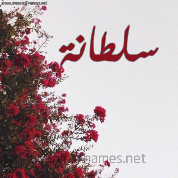 صورة اسم سلطانة Sltana شكل 18 صوره الورد الأحمر للإسم بخط رقعة