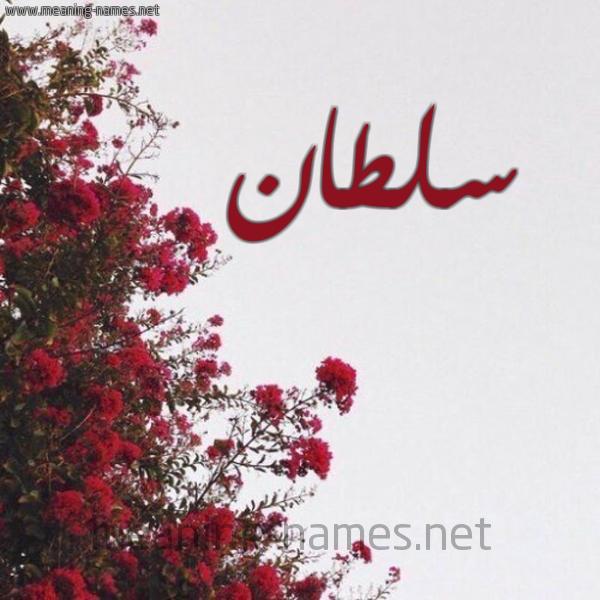 صورة اسم سلطان Soltan شكل 18 صوره الورد الأحمر للإسم بخط رقعة