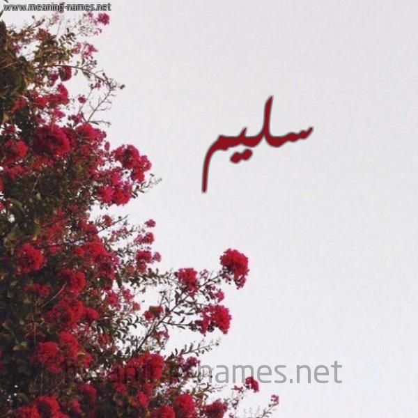 صورة اسم سليم Slem شكل 18 صوره الورد الأحمر للإسم بخط رقعة