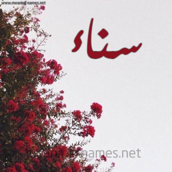 كل زخرفة وحروف سناء زخرفة أسماء كول
