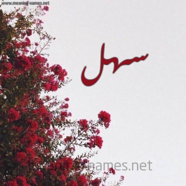 صورة اسم سهل Sahl شكل 18 صوره الورد الأحمر للإسم بخط رقعة