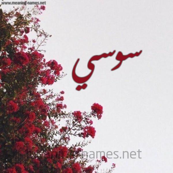 شكل 18 صوره الورد الأحمر للإسم بخط رقعة صورة اسم سوسي SOSI