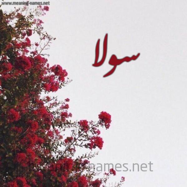 صورة اسم سولا solla شكل 18 صوره الورد الأحمر للإسم بخط رقعة