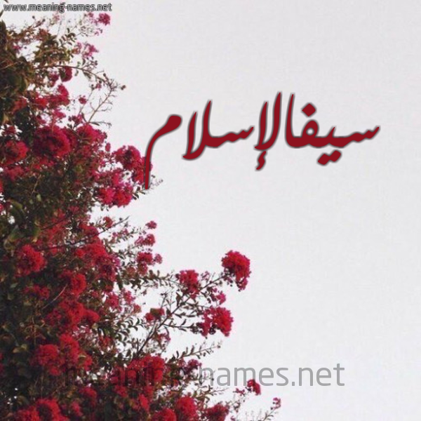 صورة اسم سيفالإسلام Syfalislam شكل 18 صوره الورد الأحمر للإسم بخط رقعة