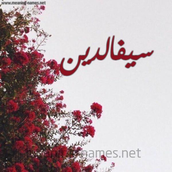 صورة اسم سيفالدين Syfaldyn شكل 18 صوره الورد الأحمر للإسم بخط رقعة