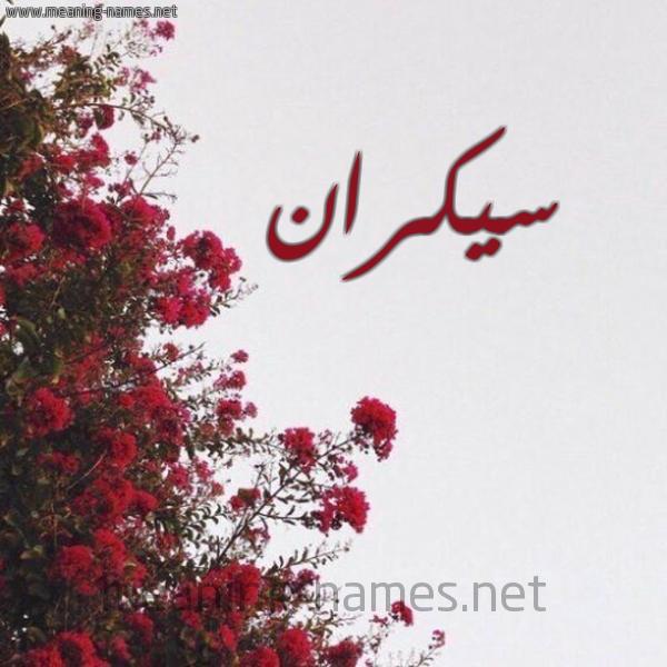 صورة اسم سيكران Sykran شكل 18 صوره الورد الأحمر للإسم بخط رقعة