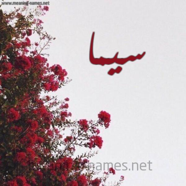 صور اسم سيما قاموس الأسماء و المعاني
