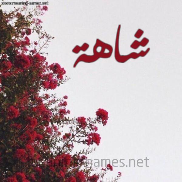 صورة اسم شاهة Shahh شكل 18 صوره الورد الأحمر للإسم بخط رقعة