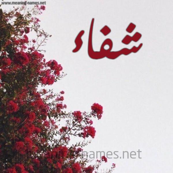 صورة اسم شفاء Sehfaa شكل 18 صوره الورد الأحمر للإسم بخط رقعة