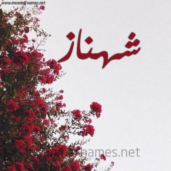 شكل 18 صوره الورد الأحمر للإسم بخط رقعة صورة اسم شهناز Shahnaz