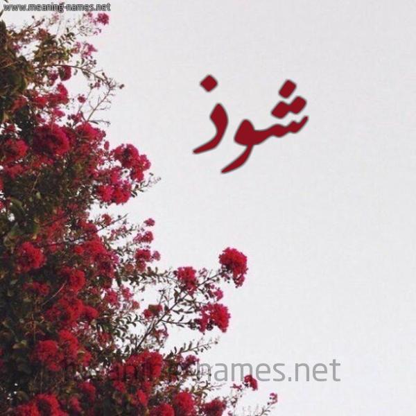 صورة اسم شوذ Shwdh شكل 18 صوره الورد الأحمر للإسم بخط رقعة