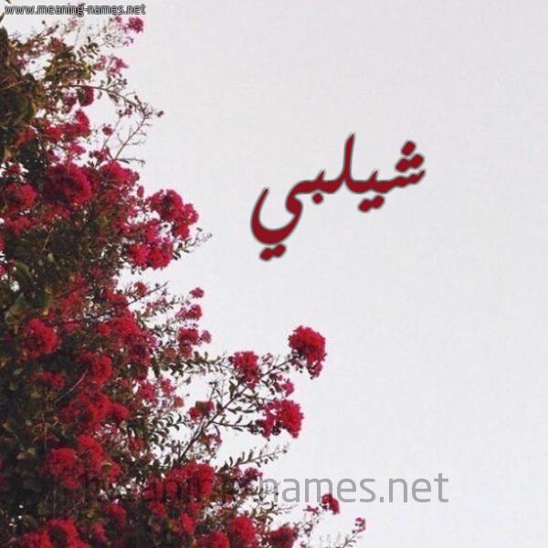 صورة اسم شيلبي Shalabi شكل 18 صوره الورد الأحمر للإسم بخط رقعة