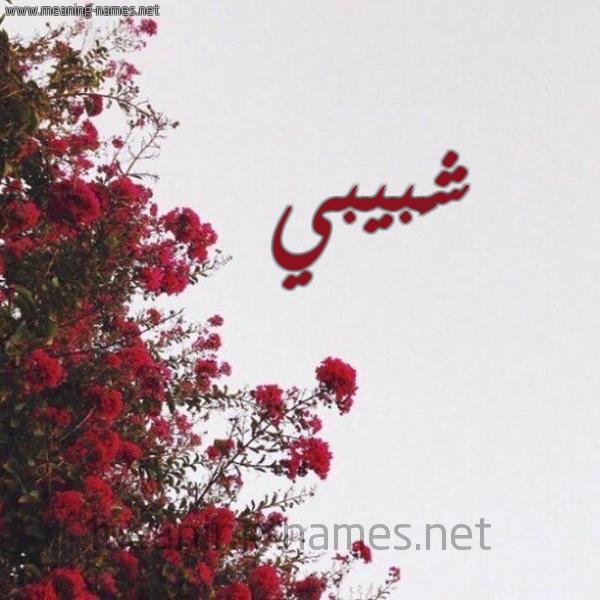 صورة اسم شَبيبي SHABIBI شكل 18 صوره الورد الأحمر للإسم بخط رقعة
