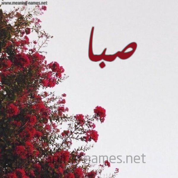 صورة اسم صبا Sba شكل 18 صوره الورد الأحمر للإسم بخط رقعة