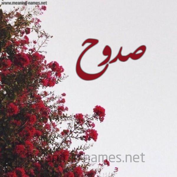 شكل 18 صوره الورد الأحمر للإسم بخط رقعة صورة اسم صدوح Sdwh