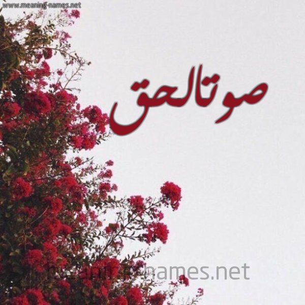 صورة اسم صوتالحق Swtalhq شكل 18 صوره الورد الأحمر للإسم بخط رقعة