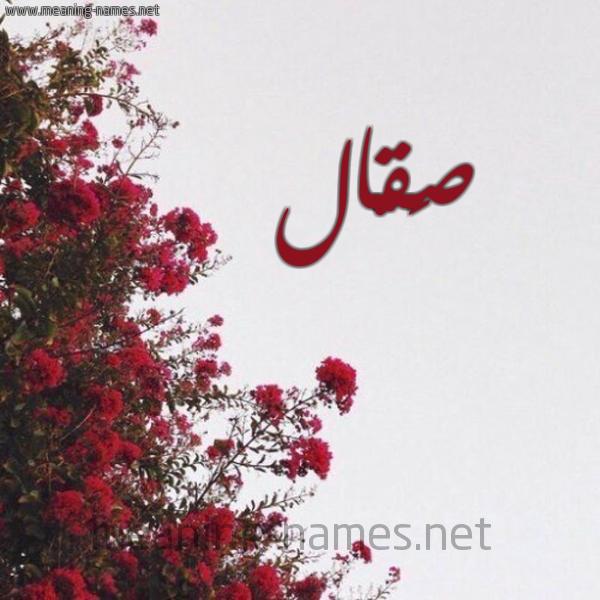 صورة اسم صَقّال SAQAL شكل 18 صوره الورد الأحمر للإسم بخط رقعة