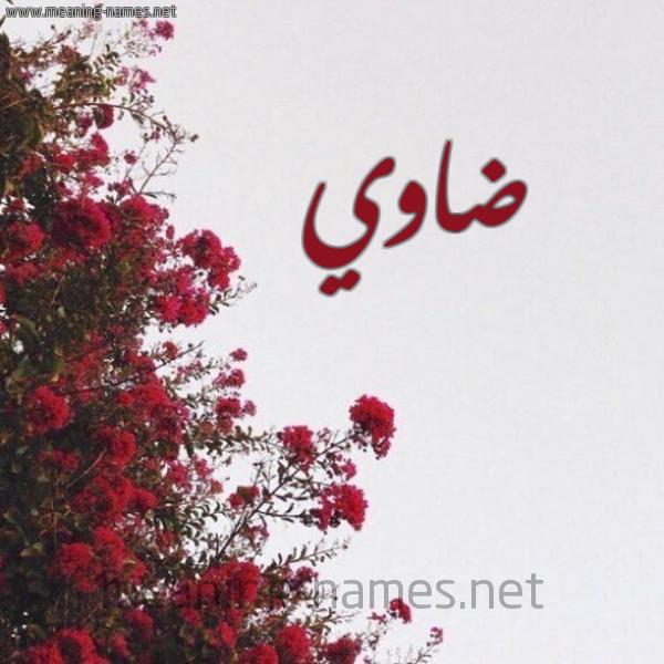 شكل 18 صوره الورد الأحمر للإسم بخط رقعة صورة اسم ضاوي Dawy