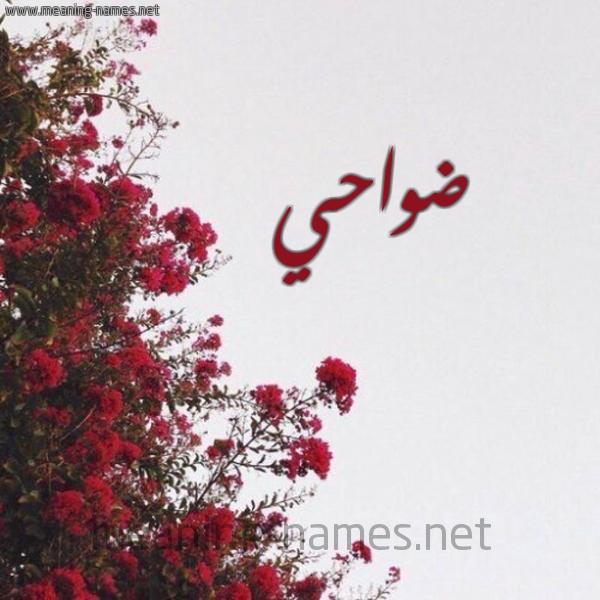 صورة اسم ضواحي Dwahy شكل 18 صوره الورد الأحمر للإسم بخط رقعة