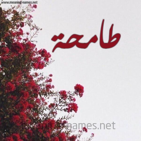 شكل 18 صوره الورد الأحمر للإسم بخط رقعة صورة اسم طامحة TAMHH