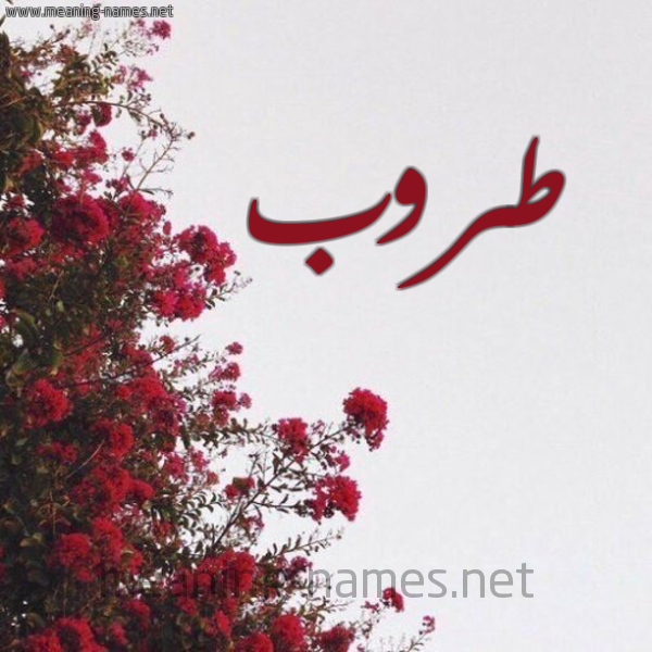 شكل 18 صوره الورد الأحمر للإسم بخط رقعة صورة اسم طروب Trwb