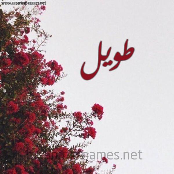 صورة اسم طويل Twyl شكل 18 صوره الورد الأحمر للإسم بخط رقعة