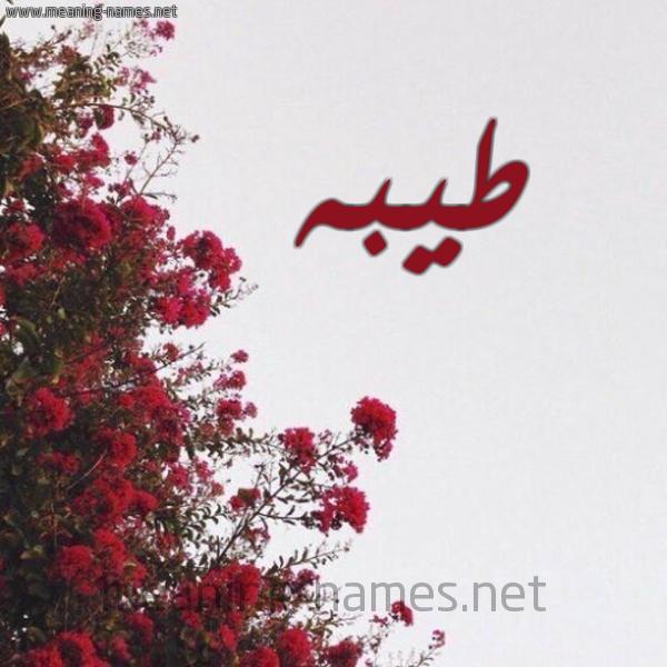 صورة اسم طيبه Teba شكل 18 صوره الورد الأحمر للإسم بخط رقعة