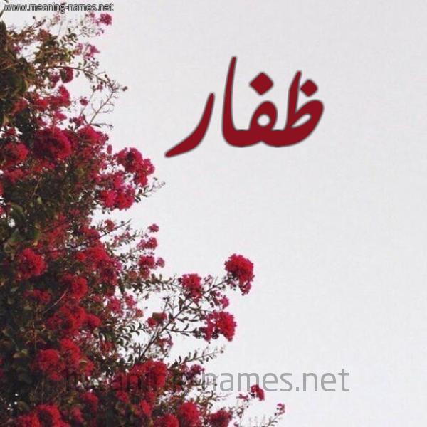 صورة اسم ظفار Zfar شكل 18 صوره الورد الأحمر للإسم بخط رقعة