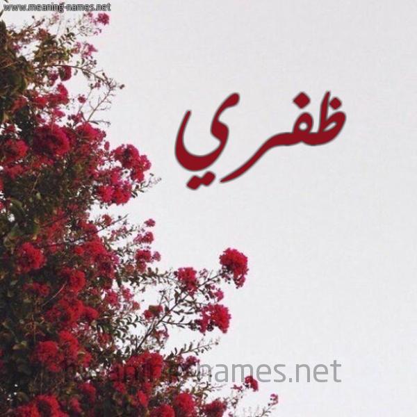 شكل 18 صوره الورد الأحمر للإسم بخط رقعة صورة اسم ظفري Zfry