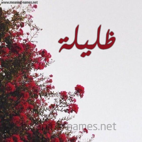 صورة اسم ظليلة Zlylh شكل 18 صوره الورد الأحمر للإسم بخط رقعة