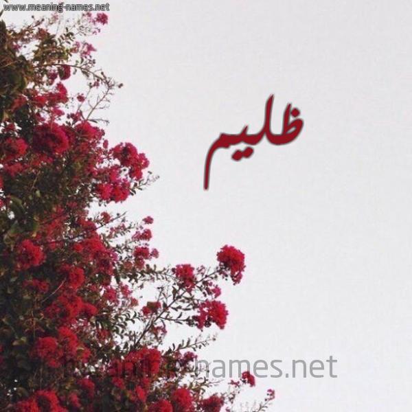 صورة اسم ظليم Zlym شكل 18 صوره الورد الأحمر للإسم بخط رقعة