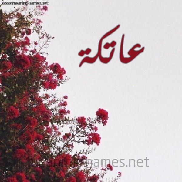 صورة اسم عاتكة ATKH شكل 18 صوره الورد الأحمر للإسم بخط رقعة