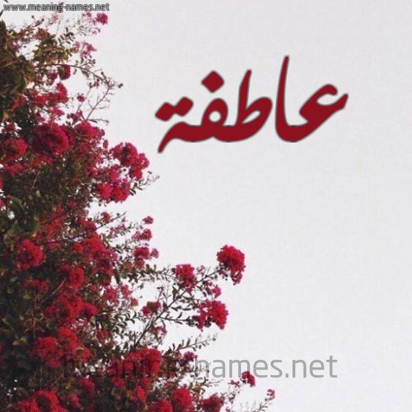 صورة اسم عاطفة Aatfh شكل 18 صوره الورد الأحمر للإسم بخط رقعة