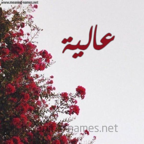 صورة اسم عالية Aalya شكل 18 صوره الورد الأحمر للإسم بخط رقعة
